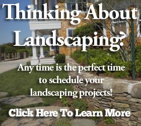 thinking landscapepic (1)